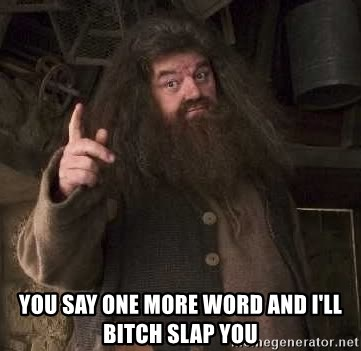 Hagrid - You say one more word and i'll bitch slap you