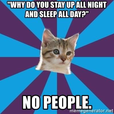 "Autistic Kitten - ""WHY DO YOU STAY UP ALL NIGHT AND SLEEP ALL DAY?"" NO PEOPLE."