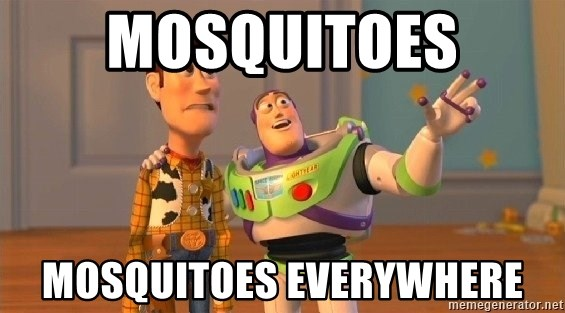 Consequences Toy Story - Mosquitoes Mosquitoes everywhere