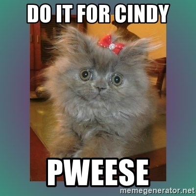 cute cat - Do it for Cindy Pweese
