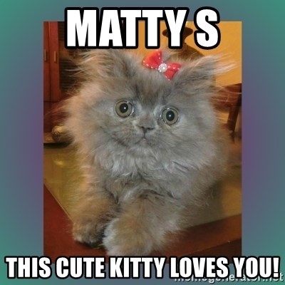 cute cat - Matty S This cute kitty loves you!