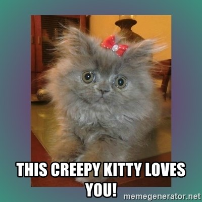 cute cat - this creepy kitty loves you!