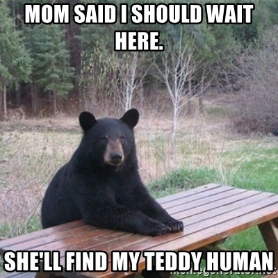 Patient Bear - Mom Said I Should Wait Here. she'll Find My Teddy Human
