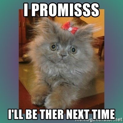 cute cat - I PROMISSS I'LL BE THER NEXT TIME