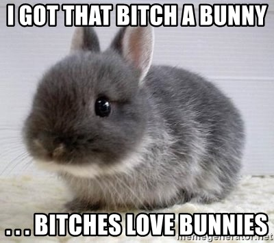 ADHD Bunny - I GOT THAT BITCH A BUNNY  . . . BITCHES LOVE BUNNIES