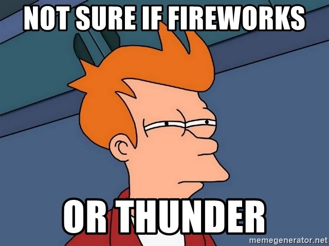 Futurama Fry - Not sure if Fireworks Or Thunder