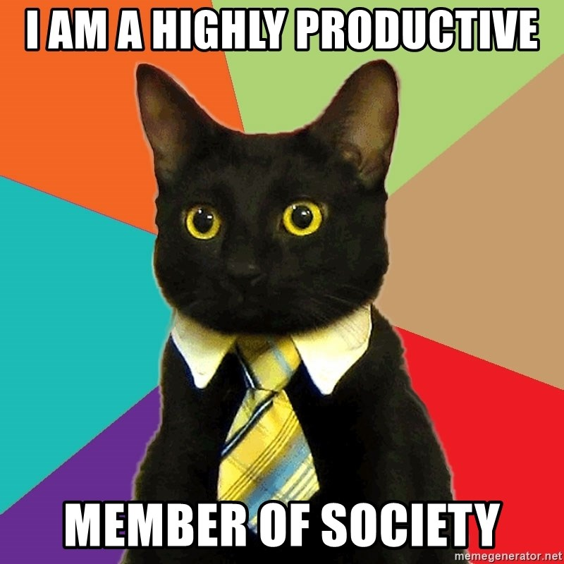 Business Cat - i am a highly productive member of society