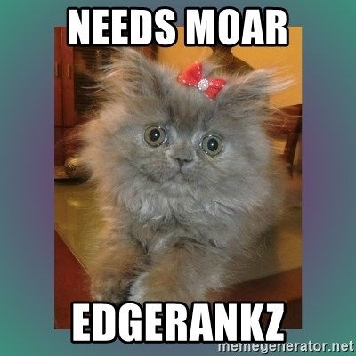 cute cat - needs moar edgerankz
