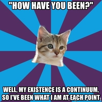 "Autistic Kitten - ""How have you been?"" Well, my existence is a continuum, so I've been what I am at each point"