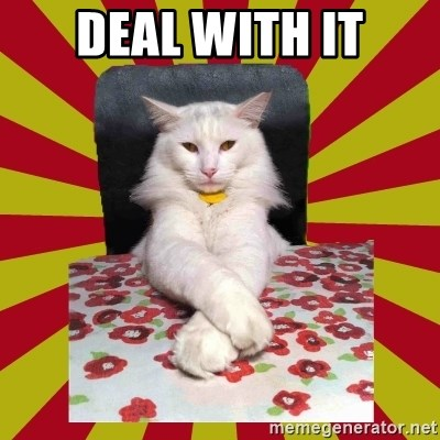 Dictator Cat - deal with it