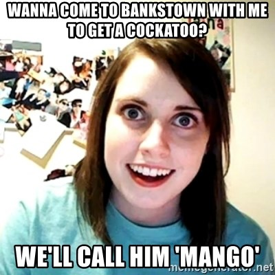 Creepy Girlfriend Meme - WANNA COME TO BANKSTOWN WITH ME TO GET A COCKATOO? We'll call him 'Mango'