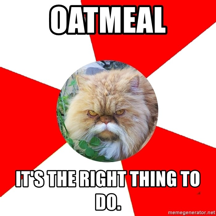Diabetic Cat - Oatmeal It's the right thing to do.