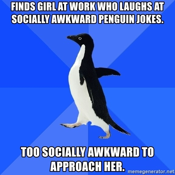 Socially Awkward Penguin - Finds girl at work who laughs at socially awkward penguin jokes. too socially awkward to approach her.