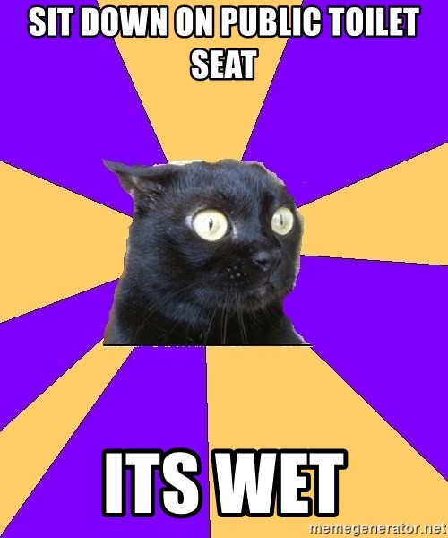 Anxiety Cat - sit down on public toilet seat its wet