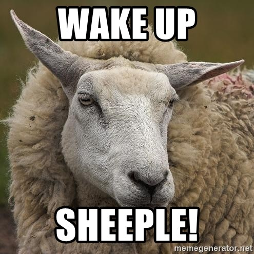 Image result for sheep meme wake up sheeple