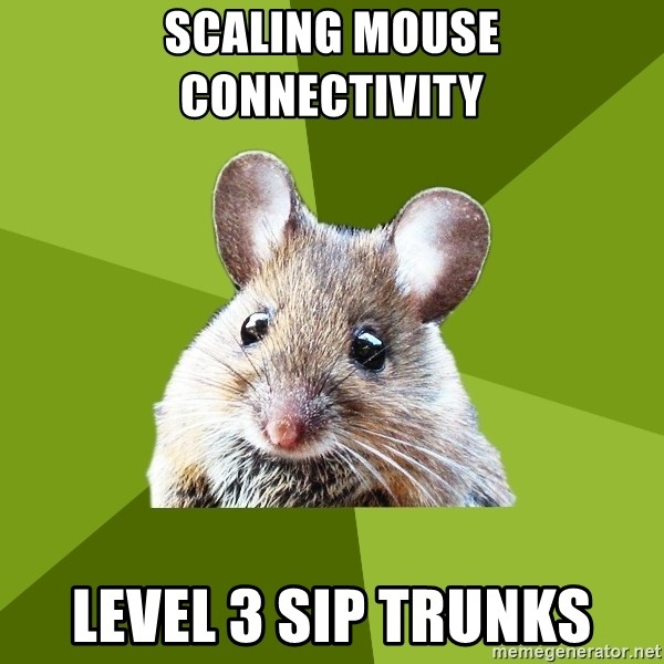 Prospective Museum Professional Mouse - scaling mouse connectivity level 3 sip trunks