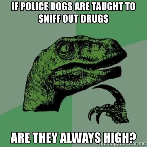 if police dogs are taught to sniff out drugs are they always