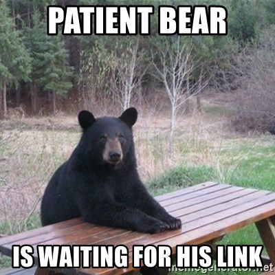 Patient Bear - patient bear is waiting for his link