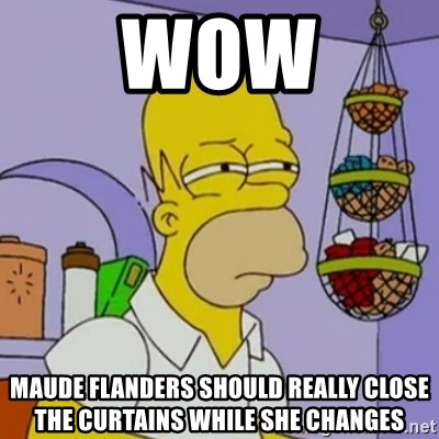 Simpsons' Homer - Wow maude flanders should really close the curtains wHile sHe changes