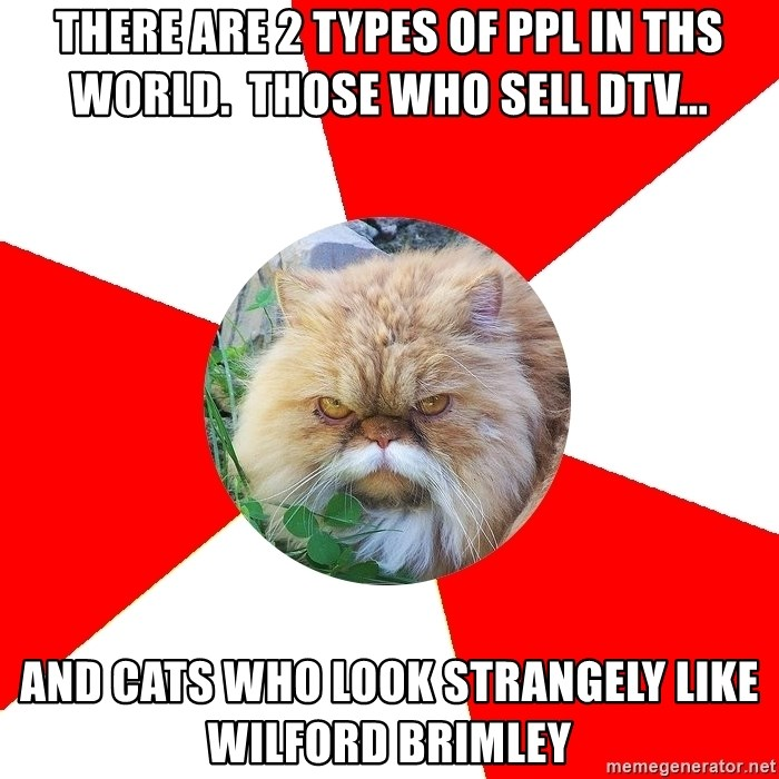Diabetic Cat - There are 2 types of ppl in ths world.  Those who sell DTV... and cats who look strangely like wilford brimley
