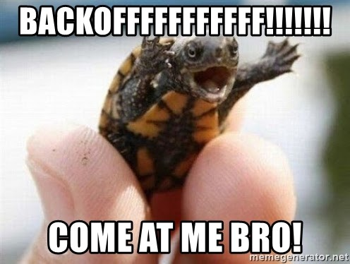 angry turtle - backofffffffffff!!!!!!! come at me bro!