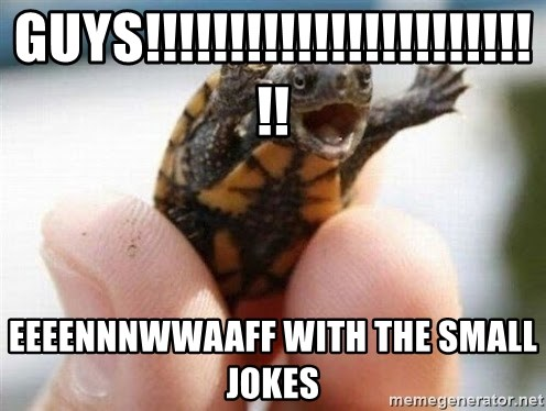 angry turtle - guys!!!!!!!!!!!!!!!!!!!!!!!!! eeeennnwwaaff with the small jokes