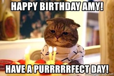 Birthday Cat - Happy Birthday Amy! Have a Purrrrrfect day!