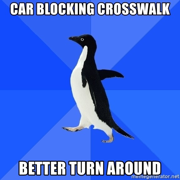 Socially Awkward Penguin - Car blocking crosswalk better turn around
