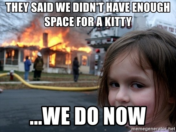 Disaster Girl - They said we didn't have enough space for a kitty ...We do now