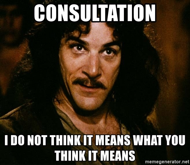 Inigo Montoya - Consultation I do not think it means what you think it means
