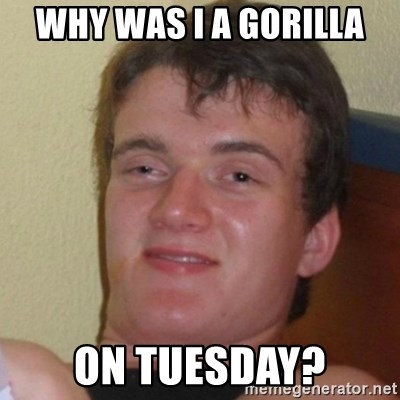 Really Stoned Guy - why was i a gorilla on tuesday?