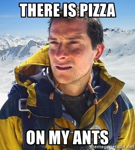 Bear Grylls Loneliness - There is pizza on my ants