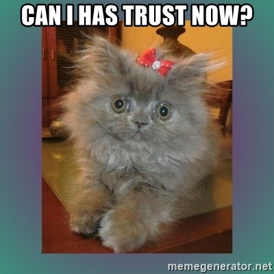 cute cat - Can I has trust now?