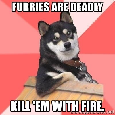 Cool Dog - Furries are deadly kill 'em with fire.