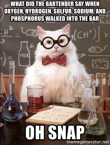 Chemistry Cat - What did the bartender say when oxygen, hydrogen, sulfur, sodium, and phosphorus walked into the bar Oh Snap