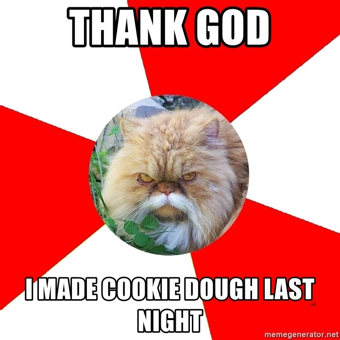 Diabetic Cat - THANK GOD I made cookie dough last night