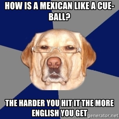 Racist Dawg - How is a mexican like a cue-ball? the harder you hit it the more english you get