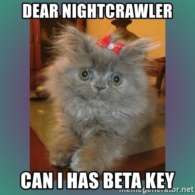 cute cat - Dear nightcrawler CAN I HAS BETA KEY