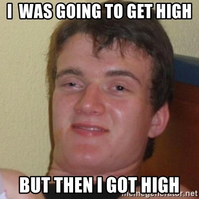 Really Stoned Guy - I  was going to get high but then i got high
