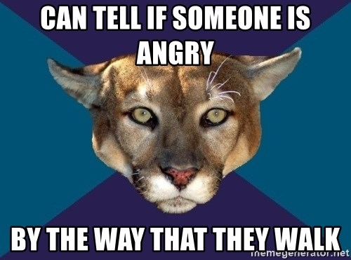 PTSD PUMA - can tell if someone is angry By the way that they walk