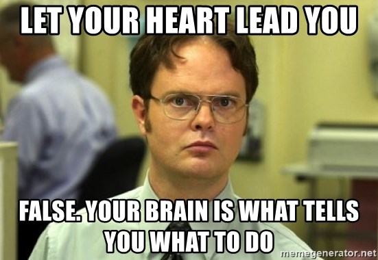 Dwight Meme - let your heart lead you FALSE. your brain is what tells you what to do