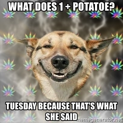 Stoner Dog - what does 1 + potatoe? tuesday because that's what she said