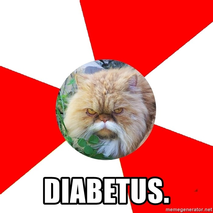 Diabetic Cat - diabetus.