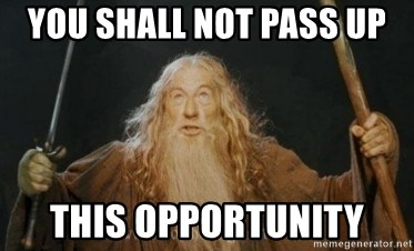 Gandalf - YOU SHALL NOT PASS UP THIS OPPORTUNITY