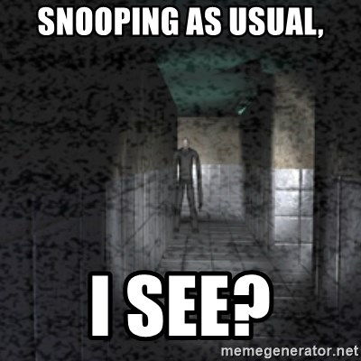 Slender game - SnooPING AS usual, I see?