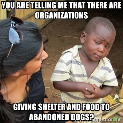 Skeptical 3rd World Kid - YOU ARE TELLING ME THAT THERE ARE ORGANIZATIONS GIVING SHELTER AND FOOD TO ABANDONED DOGS?