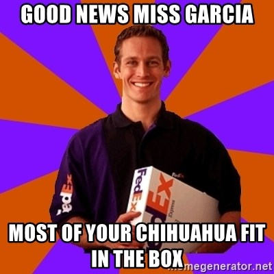 FedSex Shipping Guy - good News miss garcia most of your chihuahua fit in the box