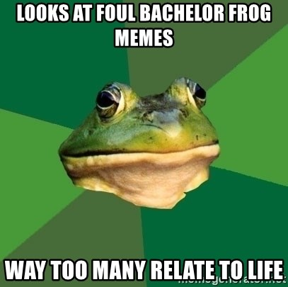 Foul Bachelor Frog - looks at foul bachelor frog memes way too many relate to life