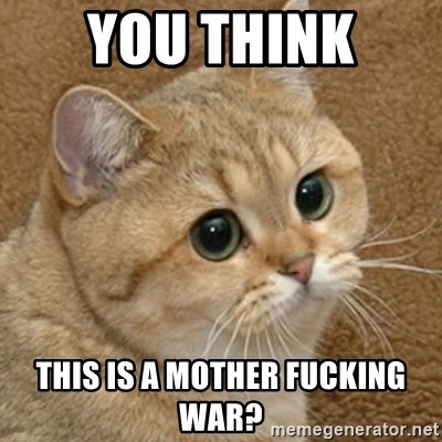 motherfucking game cat - You think  this is a mother fucking war?