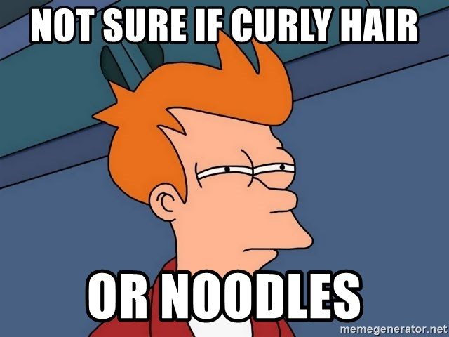 Futurama Fry - NOT SURE IF CURLY HAIR OR NOODLES